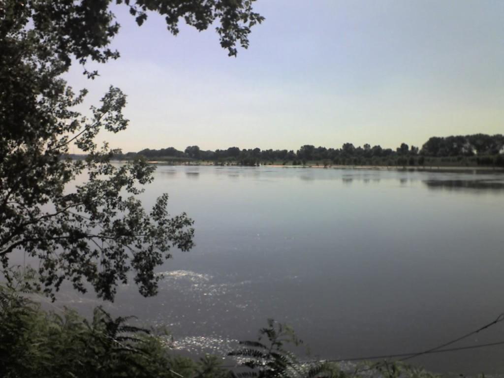 Po_River_Destra_Po_7