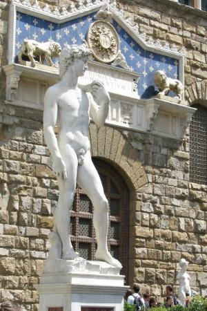 copy-of-the-david-florence
